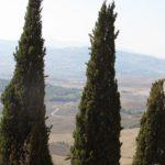 Италия Пьенза