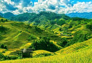 Вьетнам туры